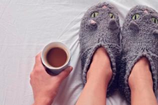 feet in cat slippers